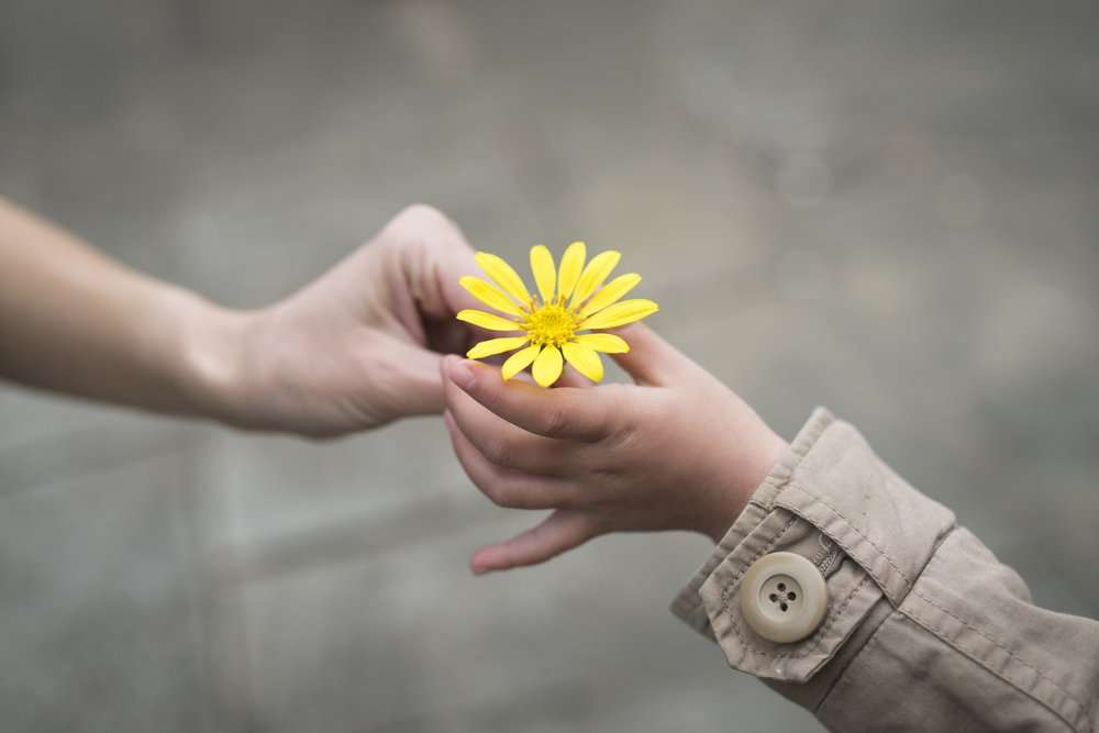 A small gesture of kindness